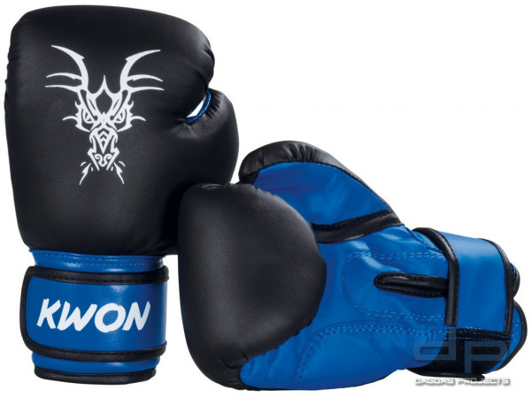 Kinder Boxhandschuhe Mini Drache